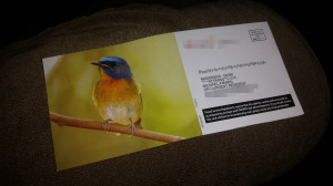 Let's discuss mailers